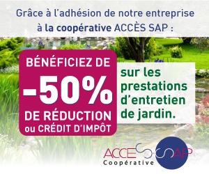 ACCES SAP